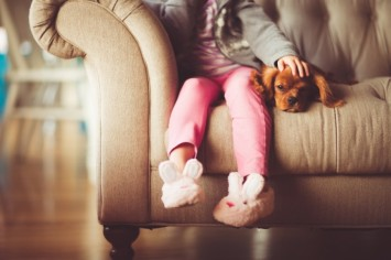 Хвостаті лиходії, або чим небезпечні домашні тварини