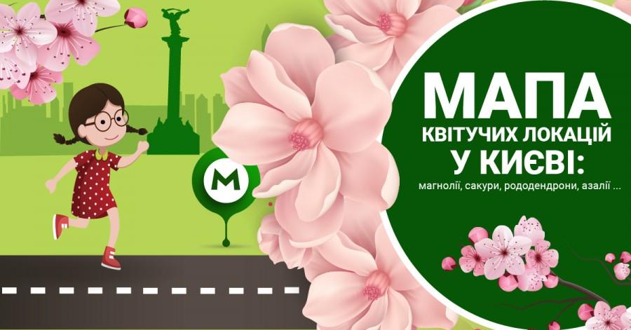 Час для яскравих селфі: в Києві цвітуть сакури та магнолії