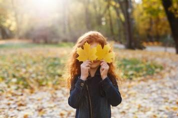 Осінні поробки: добірка креативних ідей для дитячої творчості