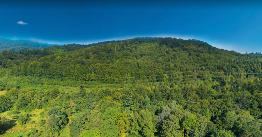 Найкрасивіші природні парки України: онлайн-прогулянки, які допоможуть спланувати відпустку
