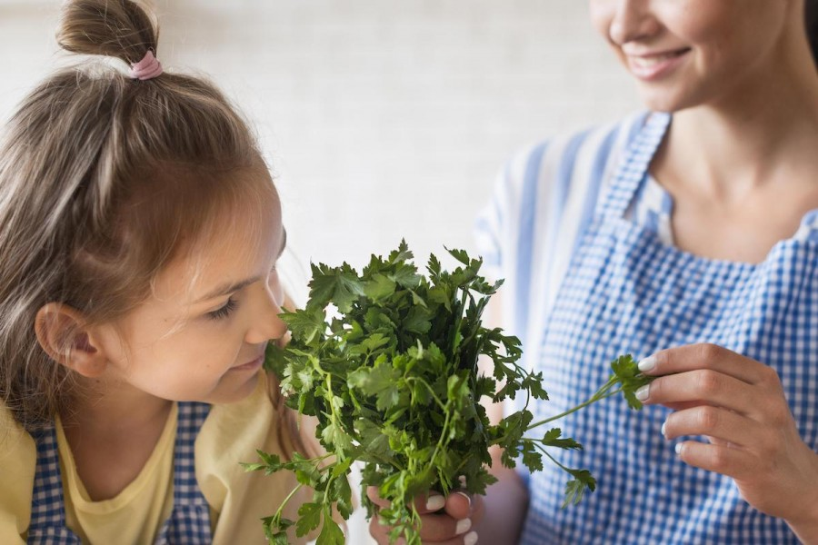 Зелень у раціоні дитини: коли і яку можна давати