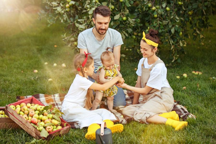 Яблучний спас: добірка смачних рецептів