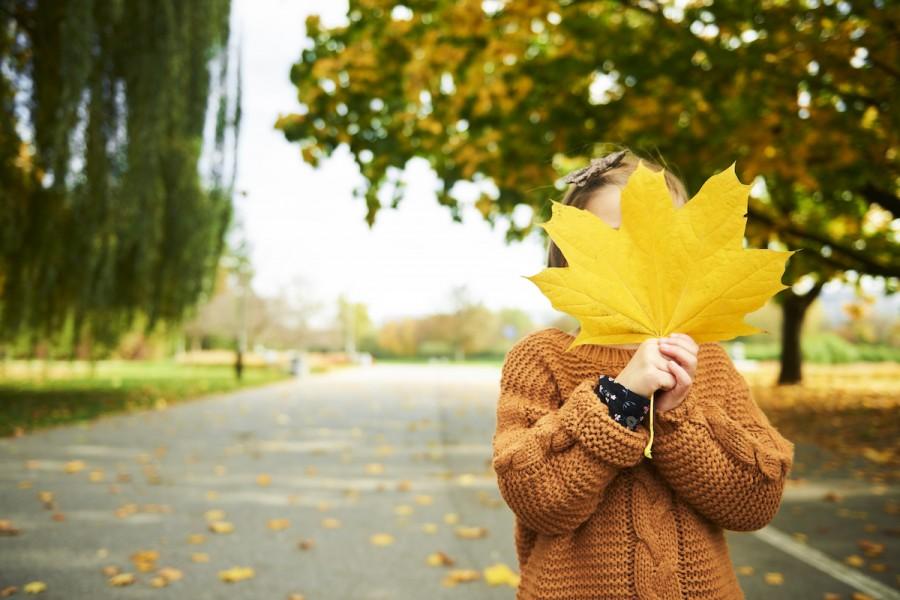 Ігри з осіннім листям: добірка забав для розвитку дитини