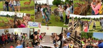 Літо в Карпатах для дітей!